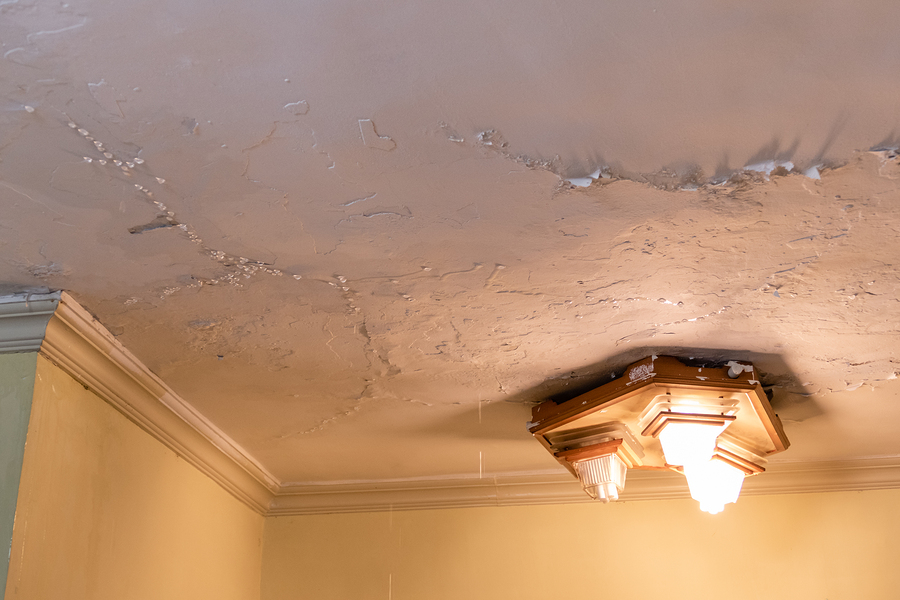 Is Your Roof Leaking? Here's What to Do