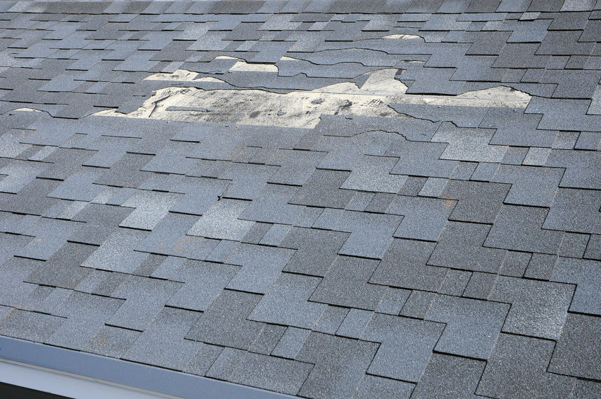 What to Do When Hail Damage Strikes Your Roof